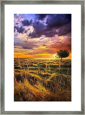 Every Story Has A Beginning Framed Print by Phil Koch
