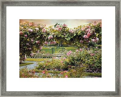 Everythings Coming Up Roses Framed Print by Jessica Jenney