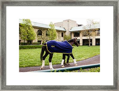 Exercise Time Framed Print by Cathy Donohoue
