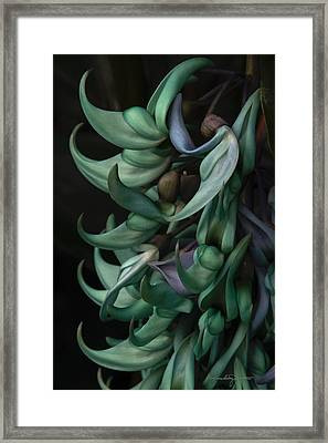 Exotic Jade Vine Framed Print by Karen Casey-Smith