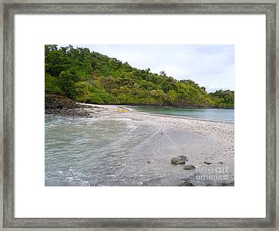 Exploring Framed Print by Carey Chen