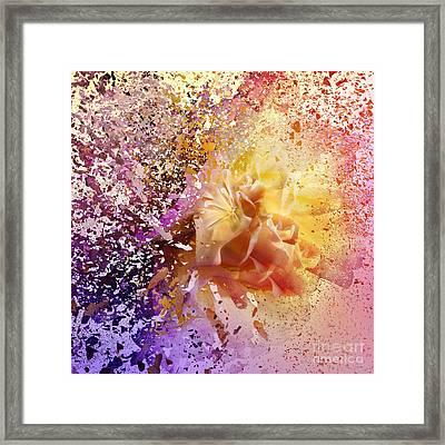 Explosion Framed Print by Svetlana Sewell