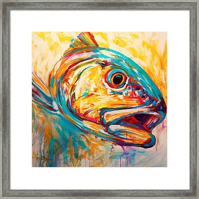 Expressionist Redfish Framed Print by Savlen Art