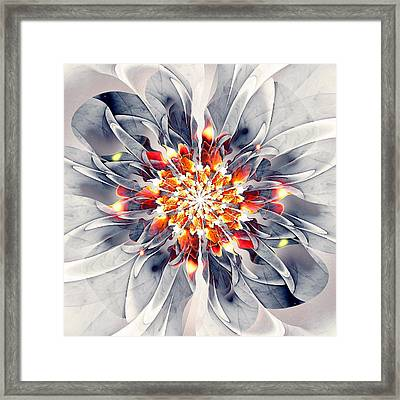 Exquisite Framed Print by Anastasiya Malakhova