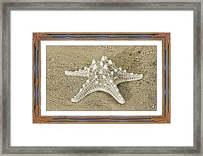 Exquisite Common Framed Print by Betsy Knapp