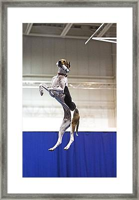 Extreme Vertical 7 Framed Print by Gerald Marella