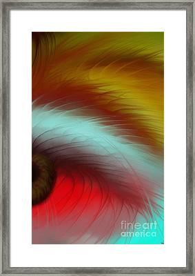 Eye Of The Beast Framed Print by Anita Lewis