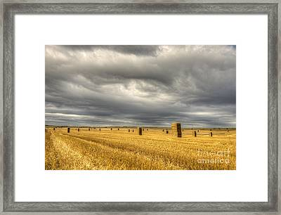 Eye Of The Storm  Framed Print by Rob Hawkins