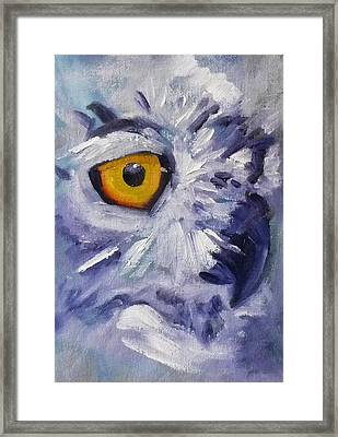Eye On You Framed Print by Nancy Merkle