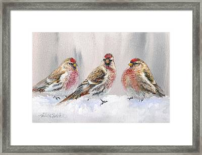 Snowy Birds - Eyeing The Feeder 2 Alaskan Redpolls In Winter Scene Framed Print by Karen Whitworth