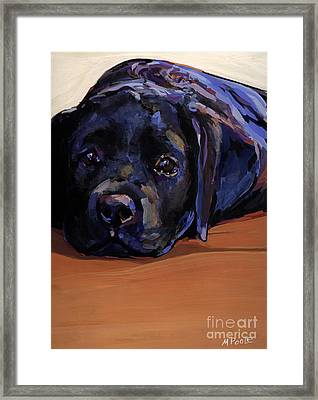 Eyes For You Framed Print by Molly Poole