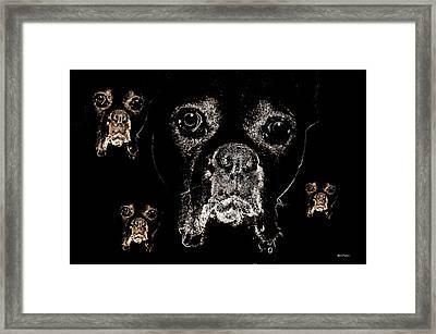 Eyes In The Dark Framed Print by Maria Urso
