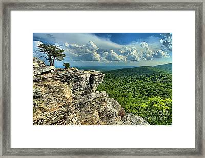 Face In The Cliff Framed Print by Adam Jewell