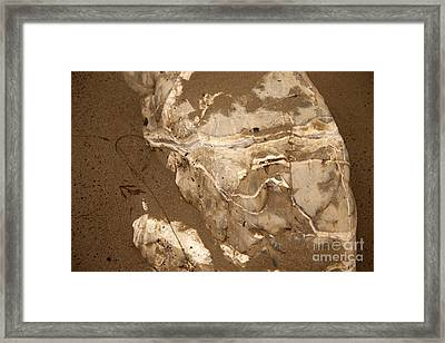 Facing The Past Framed Print by Amanda Barcon