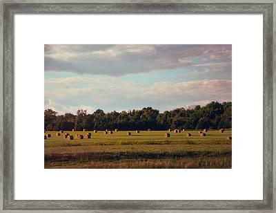 Facing The Sun Framed Print by Jai Johnson