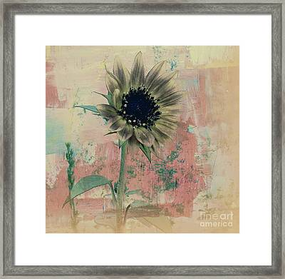 Faded Love Framed Print by Janice Westerberg