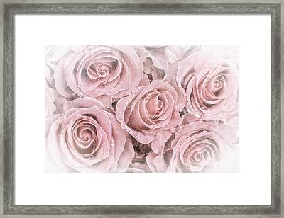 Faded Roses Framed Print by Jane Rix