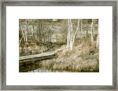 Fading Colors Of Fall Framed Print by Julie Palencia