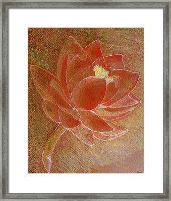 Fading Lotus Framed Print by Catherine Harms