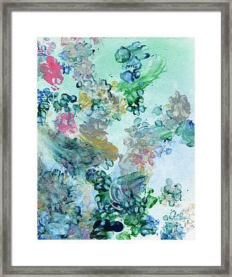 Faerie Paws Framed Print by Antony Galbraith