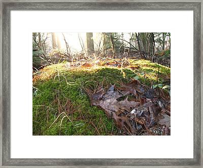 Fairy Mound Framed Print by Lynn-Marie Gildersleeve