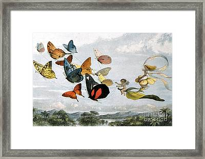 Fairy Queen Takes A Drive Framed Print by Photo Researchers