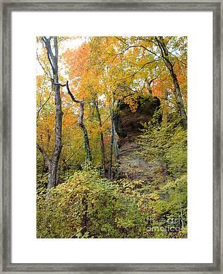 Fairy Tale Bluffs Framed Print by Janet Felts