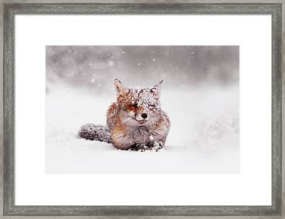 Fairytale Fox II Framed Print by Roeselien Raimond
