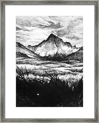 Faith As A Mustard Seed Framed Print by Aaron Spong