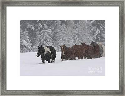Faith Will Bring You Home Framed Print by Diane Bohna
