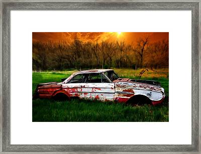 Falcon Framed Print by Liane Wright