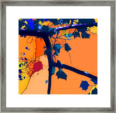 Fall Abstraction 5-2013 Framed Print by John Lautermilch