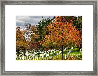 Fall Arlington National Cemetery  Framed Print by Gary Whitton