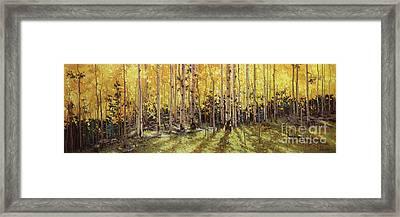 Fall Aspen Panorama Framed Print by Gary Kim
