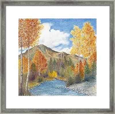 Fall Aspens Framed Print by Phyllis Howard