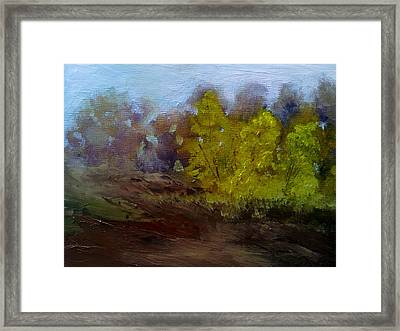 Fall Color Framed Print by Dwayne Gresham