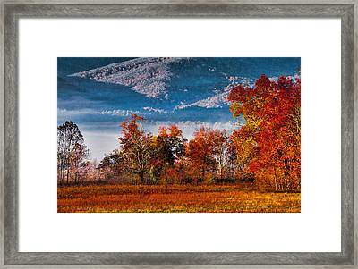 Fall Color Feast Framed Print by Dave Bosse