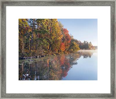 Fall Colors Along Lake Bailee In Petit Framed Print by Tim Fitzharris