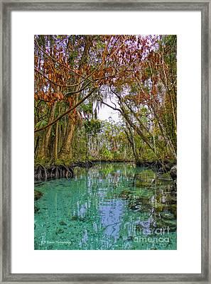 Fall Colors Along Three Sisters Spring Run Framed Print by Barbara Bowen