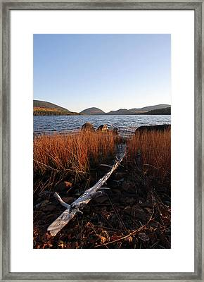 Fall Colors At Eagle Lake In Maine Framed Print by Juergen Roth
