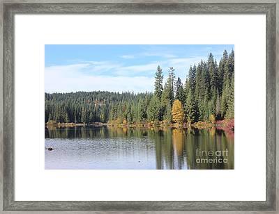 Fall Colors At Elk River I Framed Print by Linda Meyer