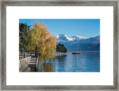 Fall Colors In Locarno Of Switzerland Framed Print by Ayhan Altun