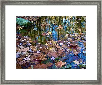Fall Creek Framed Print by Pamela Clements