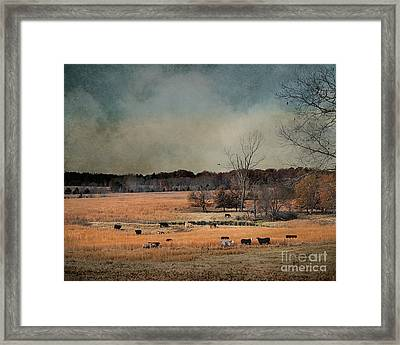 Fall Day In The Country Framed Print by Jai Johnson