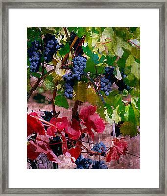 Fall Delight I Framed Print by Ken Evans