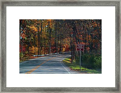 Fall Drive In Tennessee  1 Framed Print by EricaMaxine  Price