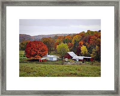 Fall Farmstead Framed Print by Cricket Hackmann