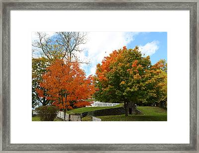 Fall Foliage Colors 09 Framed Print by Metro DC Photography