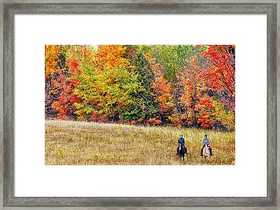 Fall Hack Framed Print by Peter Lindsay