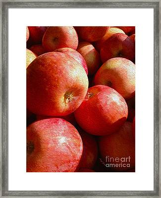 Fall Harvest Framed Print by Cheryl Young